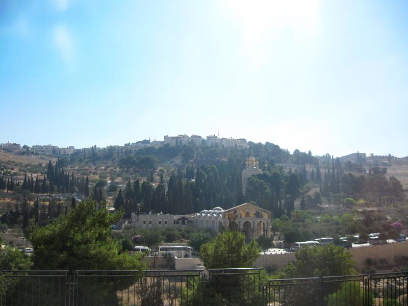 Maslinova gora