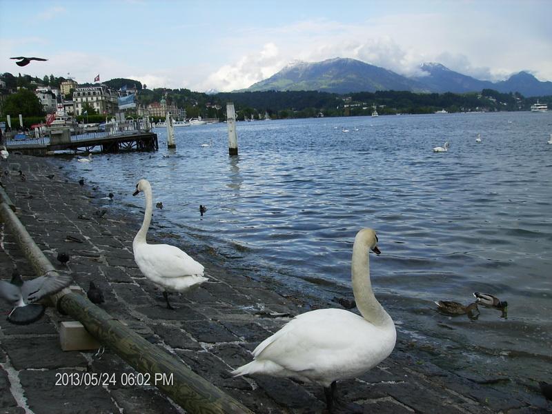 Jezero Lucern