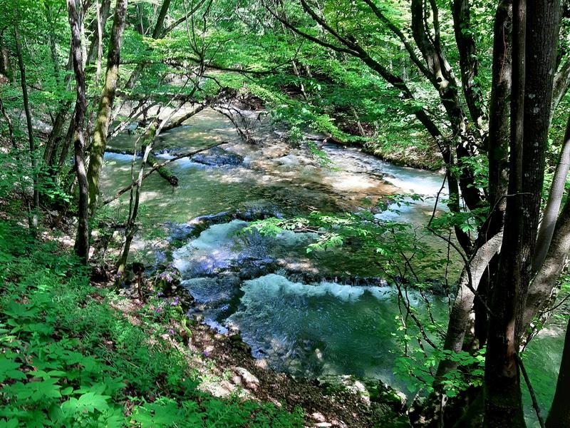 Reka Beu uzvodno od kampa