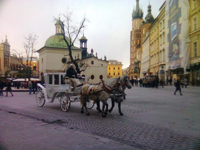 Krakov kočije na trgu Rinek