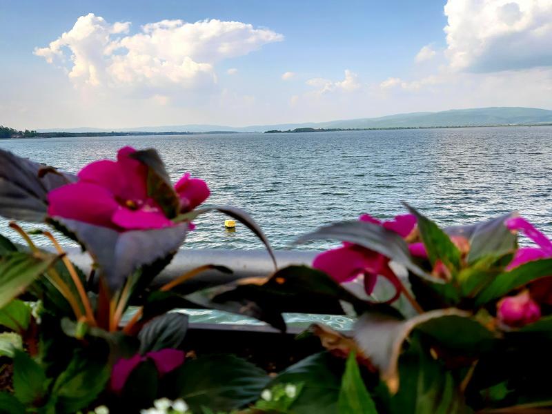 Dunav kod Golupca