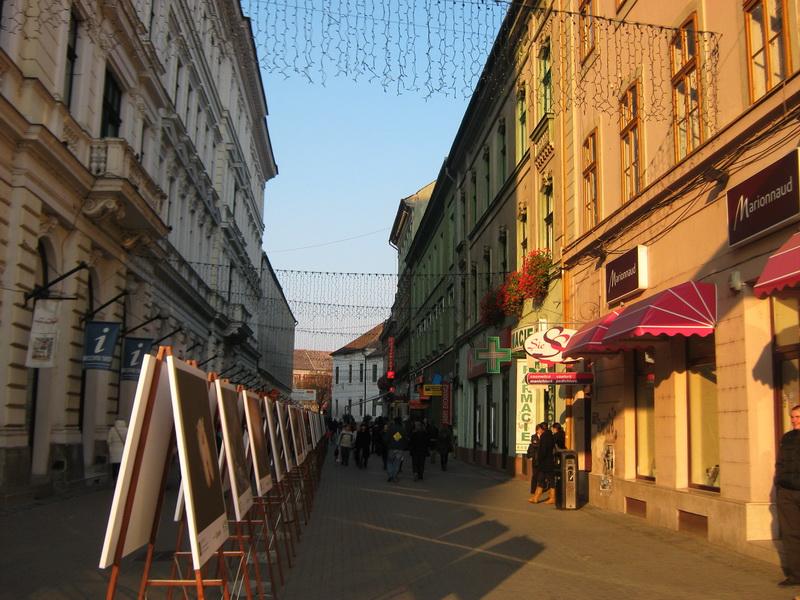 Temišvar stari grad