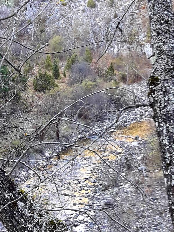 Zlatna reka
